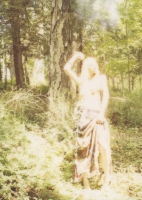 172_forestpolaroid1.jpg