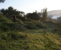 196_flower-hill-farm4.jpg