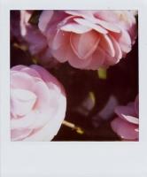 43_lolitas-modeblogg1.jpg